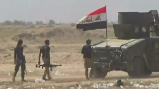 Iraqi forces and militia progress against Islamic State in Anbar