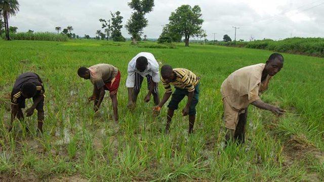 PHOTO: www.worldbank.org