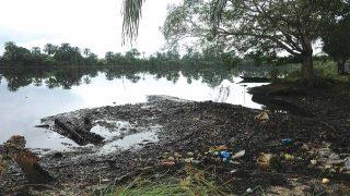 Ogoni-Land
