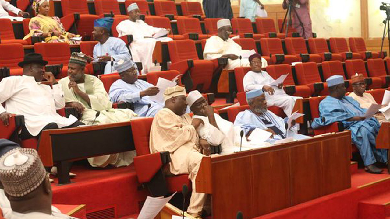 Members of the Nigerian Senate during a plenary
