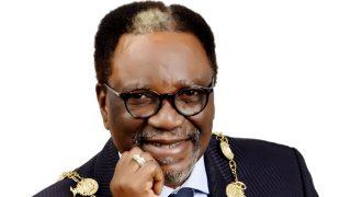 President of the Nigerian Society of Engineers, Otis Anyaeji.