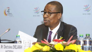 Nigeria's minister of industry, trade and investment, Okechukwu Enelamah