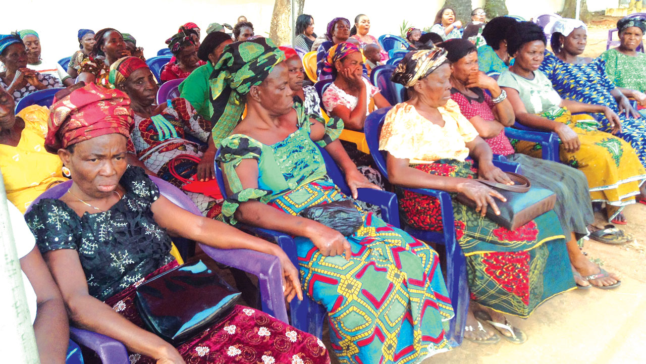 Cross section of widows at the event