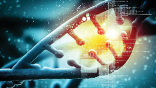Gene editing…PHOTO CREDIT: www.digitaltrends.com