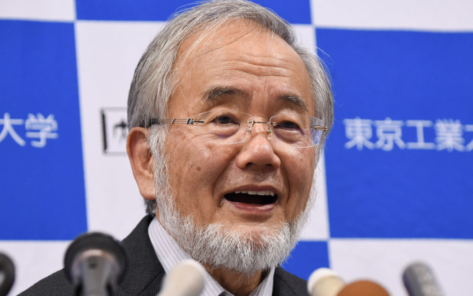 "Yoshinori Ohsumi, a professor at the Tokyo Institute of Technology, speaks during a press conference in Tokyo on October 3, 2016, after he was awarded the Nobel Medicine Prize. Yoshinori Ohsumi of Japan on October 3 won the Nobel Medicine Prize for his work on autophagy -- a process whereby cells ""eat themselves"" -- which when disrupted can cause Parkinson's and diabetes. / AFP PHOTO / Toru YAMANAKA"