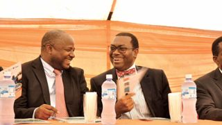 Director General of International Institute of Tropical Agriculture (IITA), Dr. Nteranya Sanginga (left) and the President, African Development Bank (ADB), Dr. Akinwumi Adesina in IITA-Abuja station, recently.