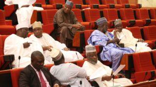 Members of the Nigerian Senate at a plenary